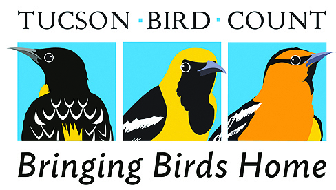 tucson_bird_count