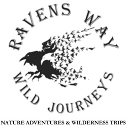 ravens_way_newlogo
