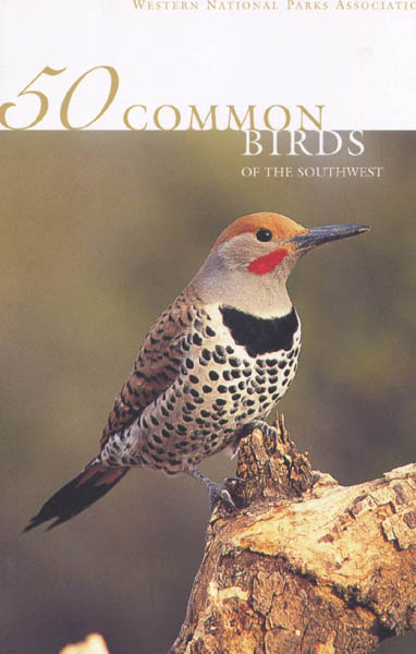 shop_50 Common Birds of the Southwest