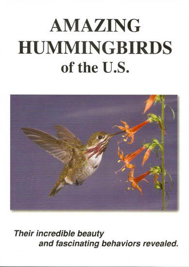shop_Amazing Hummingbirds of the Southwest